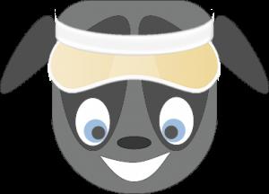 Verwenden Sie Chatbot, um den für Sie besten Golf-Entfernungsmesser zu finden
